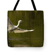 Snowy Egret Fishing In Florida Tote Bag