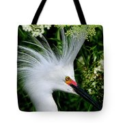 Snowy Egret With Breeding Plumage Tote Bag
