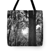 Snowy Forest Bw Tote Bag
