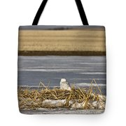 Snowy Owl Perched Frozenpond Tote Bag