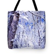 Snowy Path Tote Bag by Rob Travis