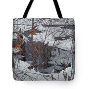 Snowy Pond Tote Bag