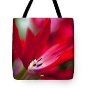 Soaring Red Tote Bag