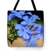 Soft Blue Plumbago  Tote Bag