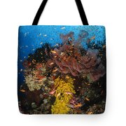 Soft Coral And Sea Fan, Fiji Tote Bag