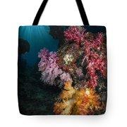 Soft Coral And Sunburst In Raja Ampat Tote Bag
