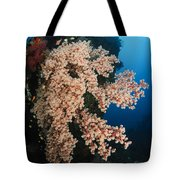 Soft Coral On The Liberty Wreck, Bali Tote Bag