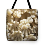 Soft Coral Polyps Feeding, Papua New Tote Bag