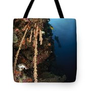 Soft Coral Reef, Indonesia Tote Bag