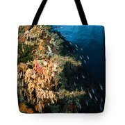Soft Coral Seascape And Rainbow Tote Bag
