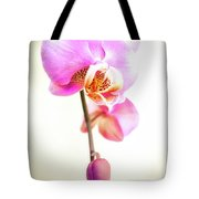 Soft Pink Orchid Tote Bag