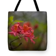 Soft Red Rhodies Tote Bag