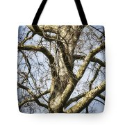 Soft Winter Light Tote Bag