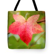 Softly Comes The Fall  2 Tote Bag