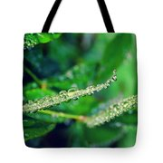 Water Droplets On Green Leaves Tote Bag