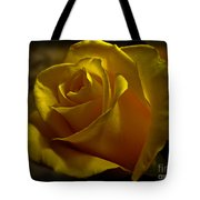 Softly Lit Tote Bag