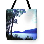 Some Sound Mt Desert Island Me Tote Bag
