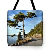 Somes Sound Maine Tote Bag by John Greim
