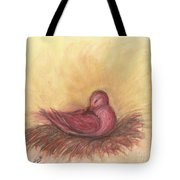 Sommeil Tote Bag