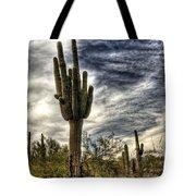 Sonoran Desert Iv Tote Bag