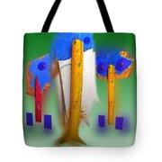 Soul Survivors Tote Bag