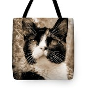 Souls Great And Small 2 Tote Bag