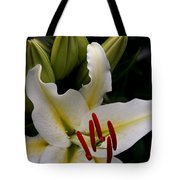 Sounding On Forever Tote Bag