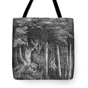 South America: Rubber Tote Bag