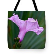 South American Morning Glory Tote Bag