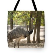 South American Rhea Tote Bag