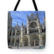 South Facade Of Leon White Gothic Tote Bag