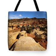 South Fruita Overlook Tote Bag