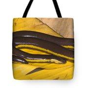Southeast Asian Caecilian Tote Bag