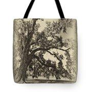 Southern Comfort Sepia Tote Bag