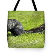 Southern Fox Squirrel Tote Bag by Phill Doherty