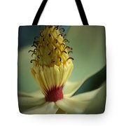 Southern Magnolia Flower Tote Bag