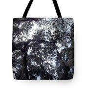 Southern Sky Tote Bag