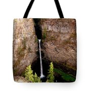 Spahats Creek Falls Tote Bag