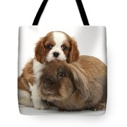 Spaniel Pup With Rabbit Tote Bag