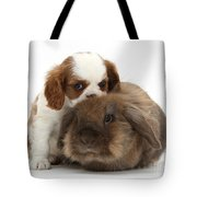 Spaniel Puppy And Rabbit Tote Bag