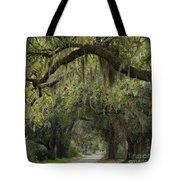 Spanish Moss - D002156 Tote Bag