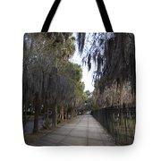 Spanish Moss Sidewalk Tote Bag