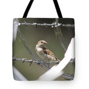 Sparrow - Protected By Razor Wire Tote Bag
