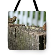 Sparrow And Chipmunk Coexist Tote Bag