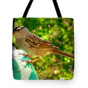 Sparrow In Morning Light  Tote Bag
