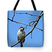 Sparrow On The Branch Tote Bag