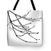 Speaking To Heaven Tote Bag