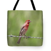 Speckled In Red Tote Bag