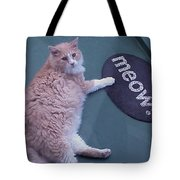 Spelling Lessons Tote Bag