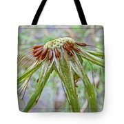 Spent Dandilion Tote Bag